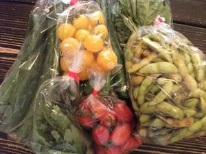 2013_0810野菜.JPG