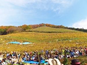 収穫祭3.jpg