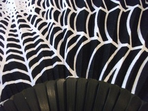 扇子蜘蛛の巣UP.JPG