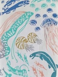 深海魚上S.jpg