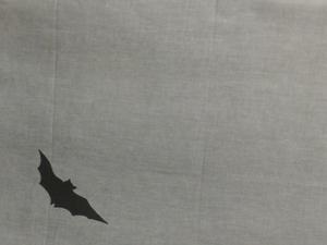 蝙蝠左S.jpg
