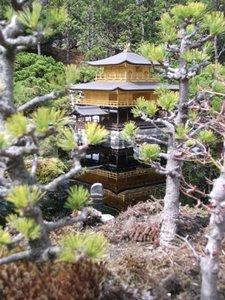 12京都.JPG