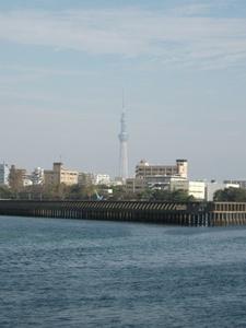 2011まるごと船14.jpg