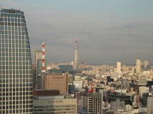 2011_0111タワーからツリー.JPG