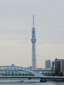 2011_0324.JPG