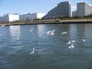 2012_03舟運ツアー17.JPG