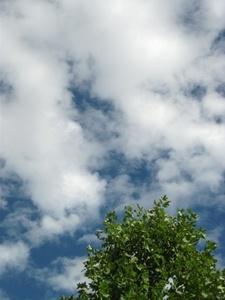 2013_1016台風一過.JPG