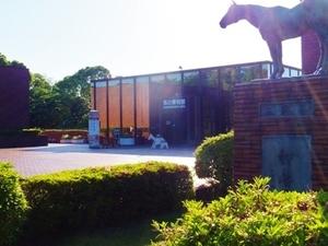 2016_0514馬の博物館.jpg