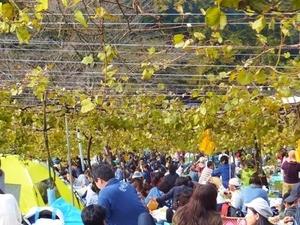 収穫祭4.jpg