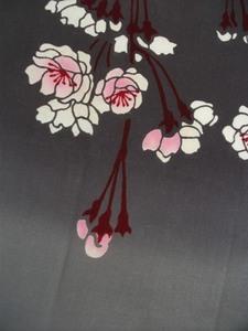 夜桜UP.JPG