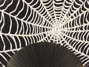扇子蜘蛛の巣UPS.jpg
