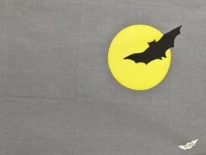 蝙蝠右S.jpg