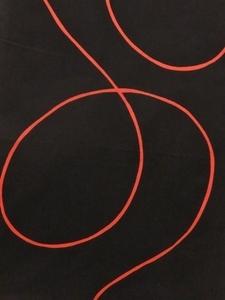 赤い糸下S.jpg
