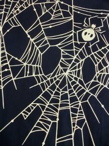 髑髏蜘蛛UP.JPG