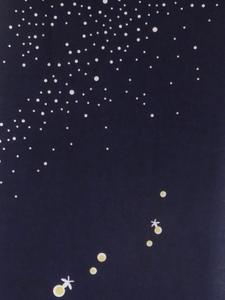 S 夏の星空上.jpg